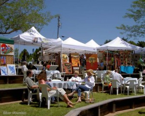Silver Mountain Winery at the 2012 Vintners' Festival
