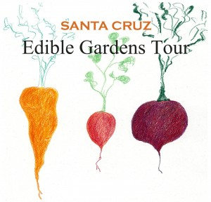 The second annual Santa Cruz Edible Gardens Tour is Aug 24, 2013